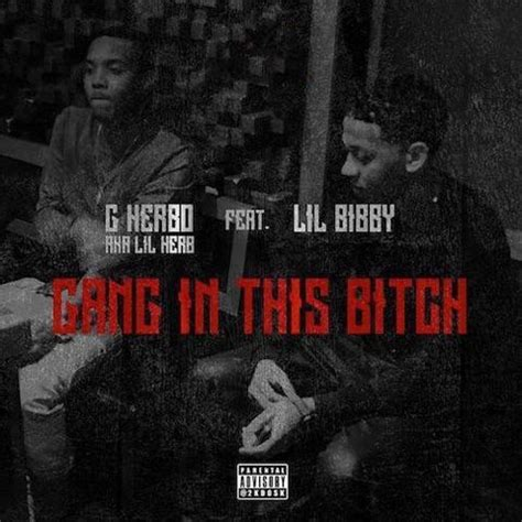 Lil Herb Criminal Record G Herbo In This Feat Lil Bibby