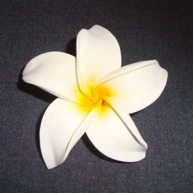 Tas Rotan Bulat Tas Selempang Bulat Kerajinan Ate Tas Etnik Anyaman bunga anggrek putih 7cm