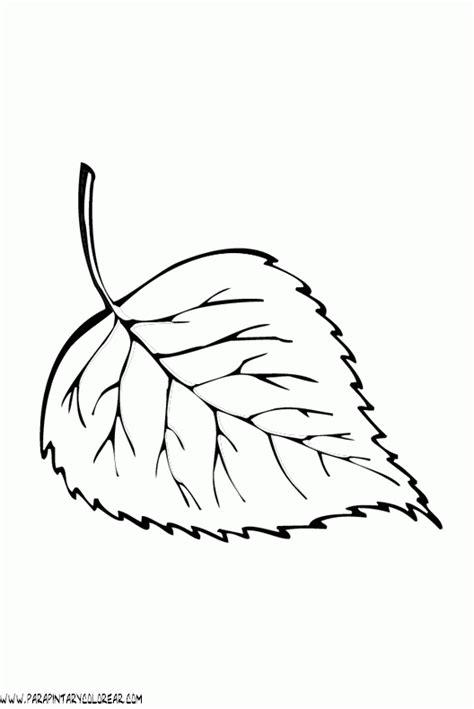 imagenes para colorear hojas dibujos para colorear de hojas de arboles 001