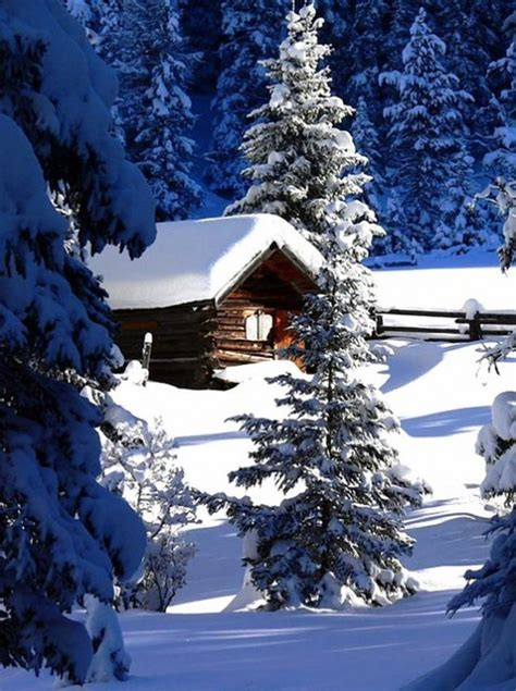 Snowy Cabin In The Woods by Snow Covered Cabin Winter Wonderment