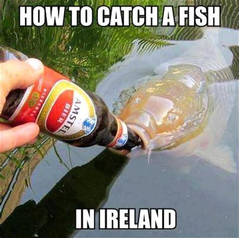 how to catch a fish in ireland dump a day