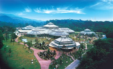 botanical garden china 10 tempat wisata di guangzhou yang wajib dikunjungi