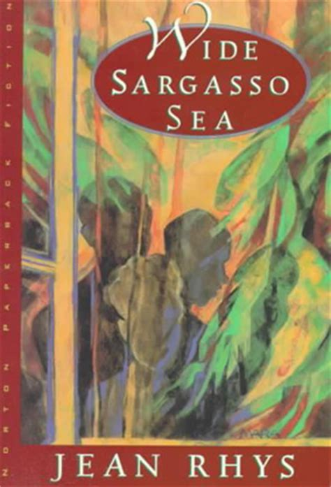 themes of jane eyre and wide sargasso sea wide sargasso sea diary of a future golden girl