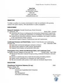 how a resume looks like sles of resumes