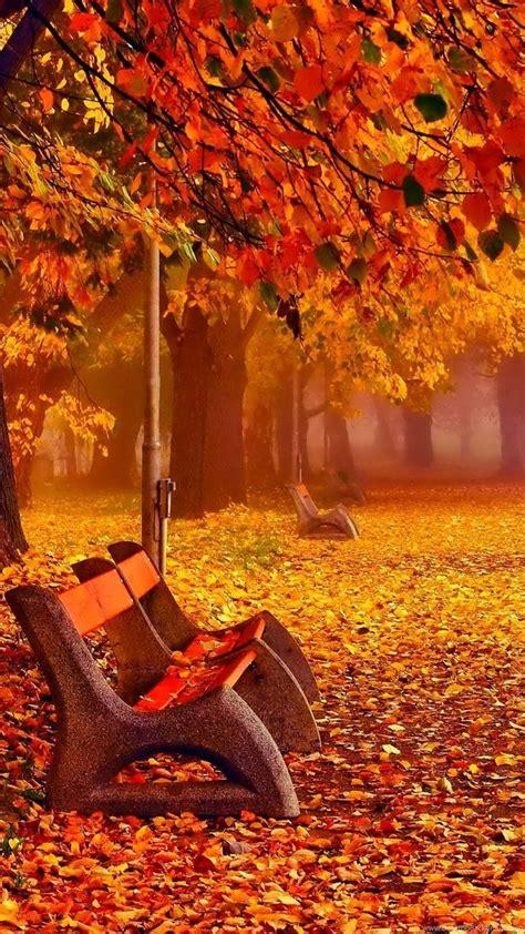 autumn fall wallpapers november desktop background