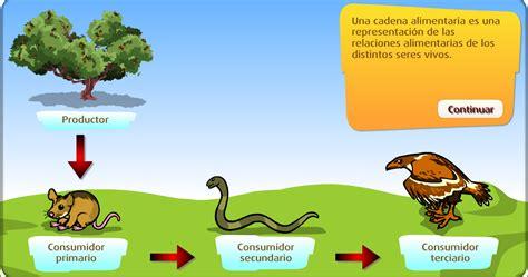 las cadenas alimenticias wikipedia cadena alimentaria para ni 241 os imagui