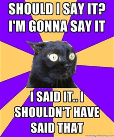 Anxiety Cat Memes - shouldn t have said that