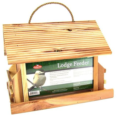 how to build a finch house finches bird house finch birds