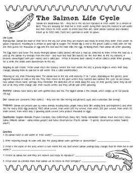 reading comprehension test for grade 9 reading comprehension practice test grade 11 reading