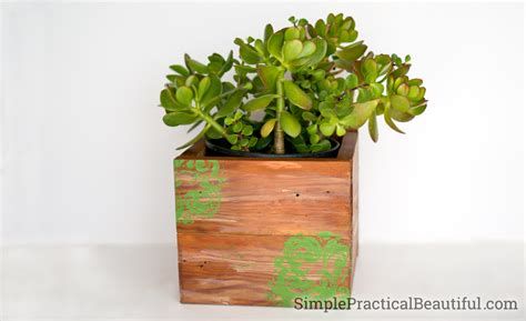 diy succulent planter 10 succulent planter ideas simple practical beautiful
