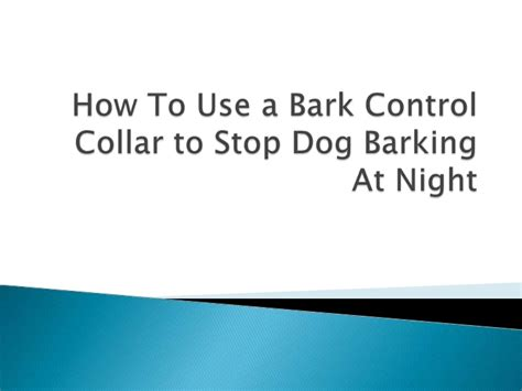 how to stop barking at how to use a bark collar to stop barking at