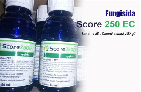 keunggulan  kekurangan fungisida score  ec manfaat
