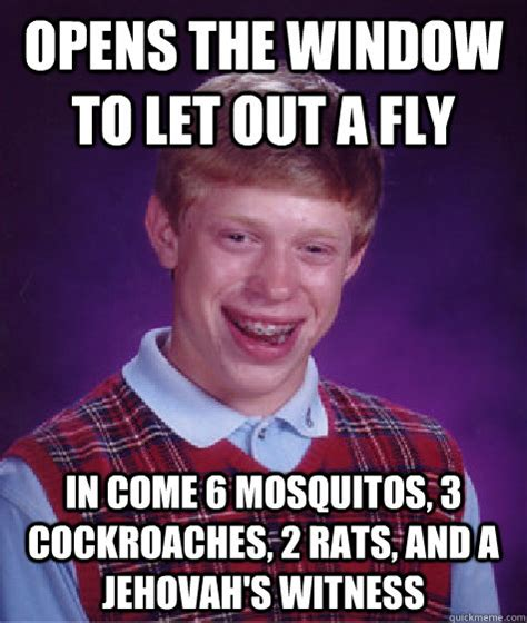 Fly Out Memes - opens the window to let out a fly in come 6 mosquitos 3