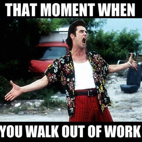 End Of Work Day Meme - i feel you buddy leaving work on friday memes funny