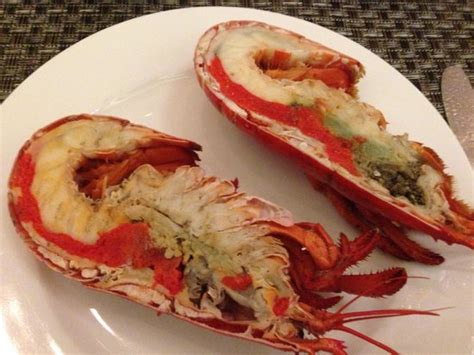 boston lobster picture of 10 at claymore singapore