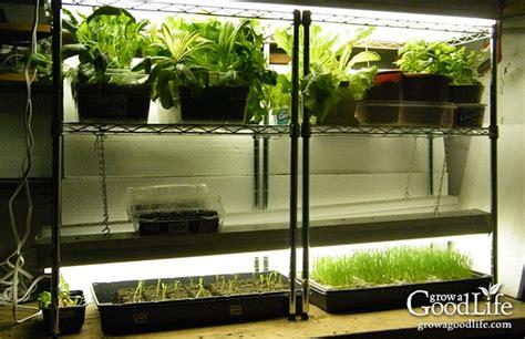 build  grow light system  starting seeds indoors