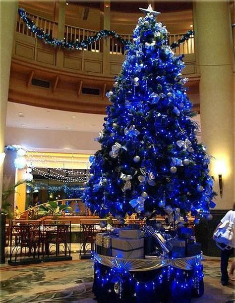 photos of blue christmas trees blue tree seasonal trees