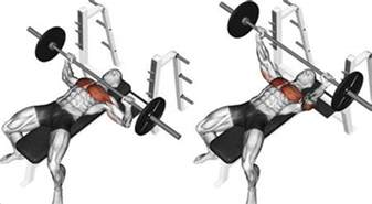 how to increase bench press weight bench press how to increase your 1 rep max fitness