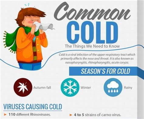 7 Tips On Preventing The Common Cold by 5 Things To About Common Cold Binsbox