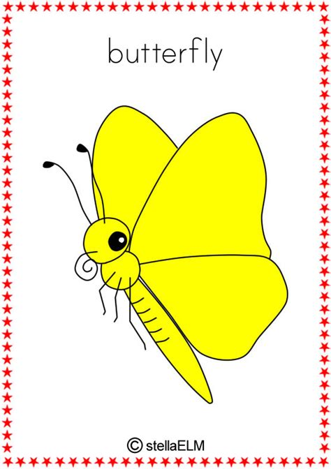 printable insect flash cards flashcards insects