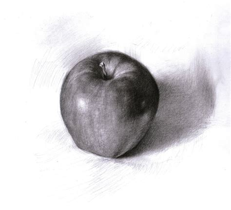 apple study 1 by silentjustice on deviantart