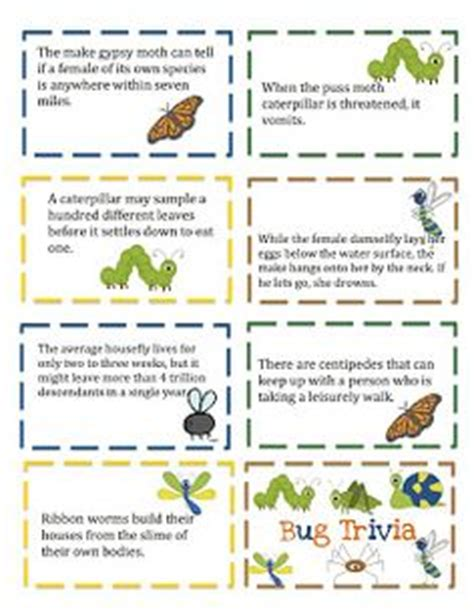 printable quiz about spring 1000 images about bugs on pinterest preschool