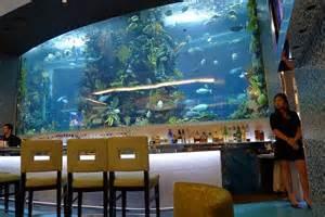 Massive bar aquarium fish tank aquariums amp fish tanks pinterest
