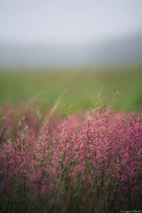 Landscape Photography Aperture Creative Ways To Use Wide Apertures In Landscape Photography