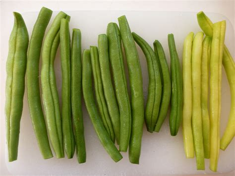 green beans in our la garden - Types Of Garden Beans