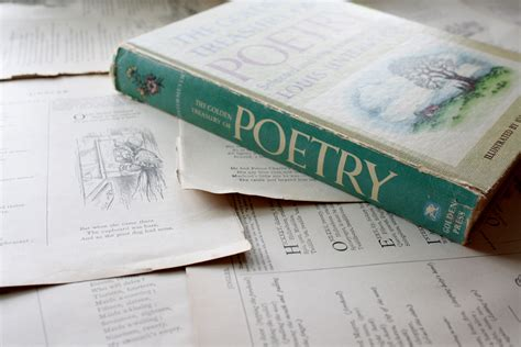 poetry books 5 poetry books that our family book big story