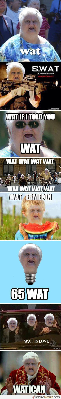 Memes Wat - wat old lady meme compilation xyz pinterest i love