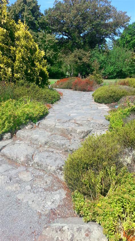 anlegen steingarten steingarten anlegen ein hauch alpinem flair
