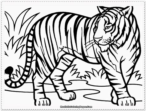 coloring ideas printable tiger color sheet 45 for your gallery coloring