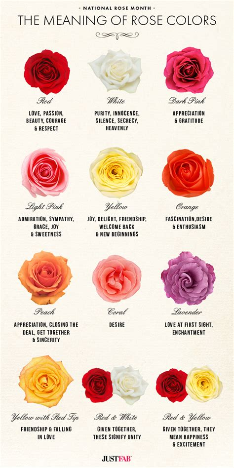 different colors of roses national month the meaning of colors