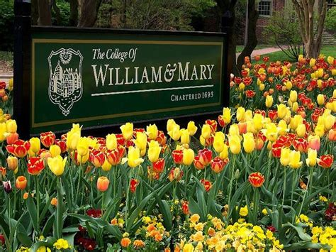 Gmu Mba Review by College Of William