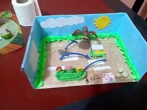 cadena alimenticia acuatica maqueta como hacer una maqueta de la cadena alimenticias facil