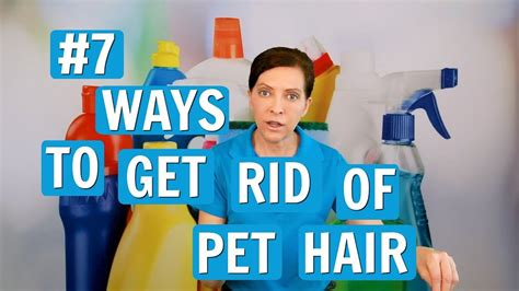 best way to get dog hair off the couch pet hair removal 7 best ways 2017 youtube