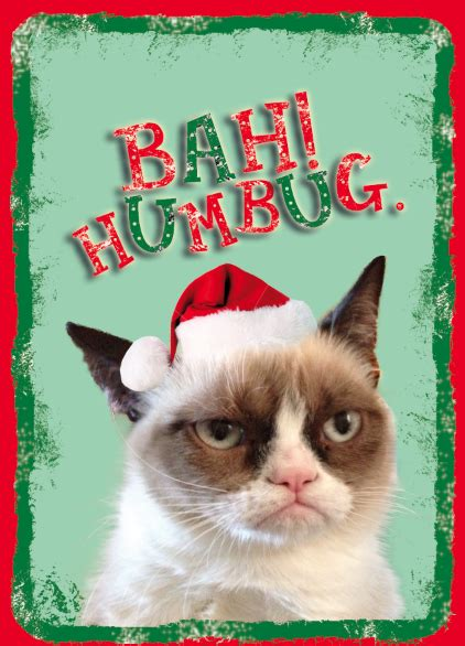 grumpy cat christmas funny collection world