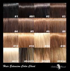 shades of hair color chart 1000 ideas about hair color charts on
