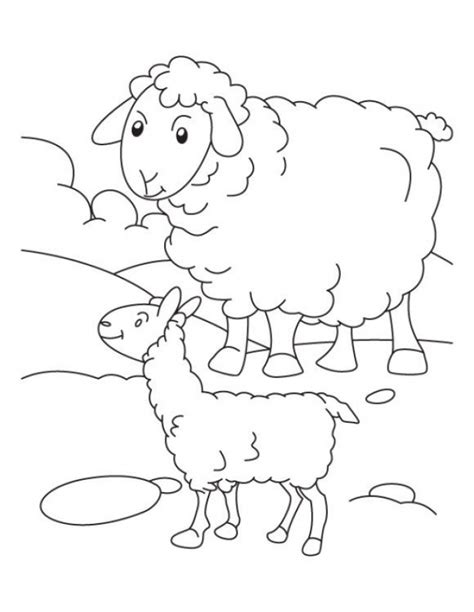 preschool coloring page sheep get this sheep coloring pages preschool wayc7