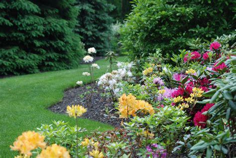 spring garden maitland garden  hope