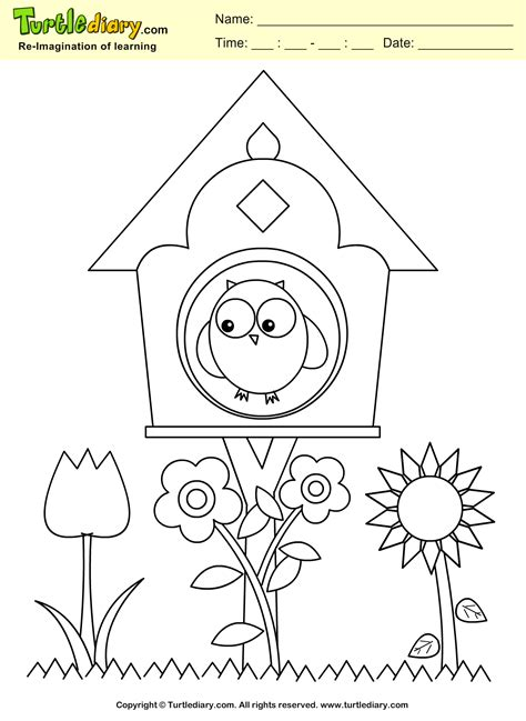 spring house coloring pages bird house coloring sheet turtle diary