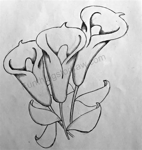 Me Draw Things things to sketch www pixshark images galleries