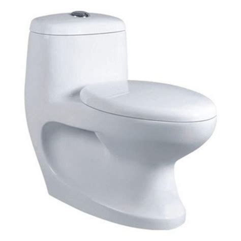 Wc Wash Closet by Buy Belmonte One Water Closet Cally S Trap With Lcd
