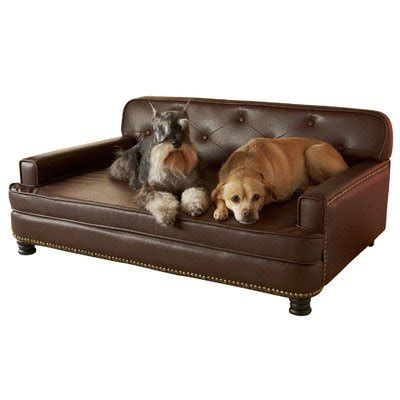 couch style dog bed furniture style dog beds webnuggetz com