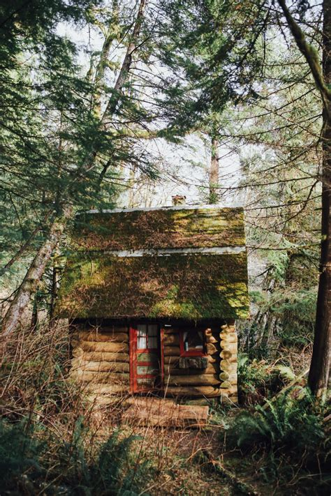 cozy cottage in the woods a cozy cottage in the woods in washington local wanderer
