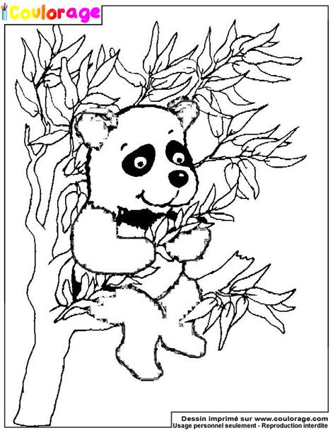 Coulorage Dessin Et Coloriage De Panda 224 Imprimer