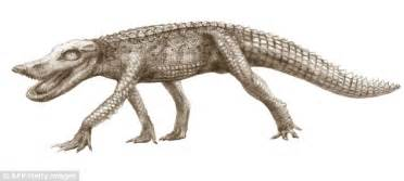 flat unyu crocodile htm prehistoric crocodile name www pixshark images