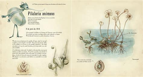 descargar pdf el herbario de las hadas the herbarium of the fairies libro edelvives el herbario de las hadas