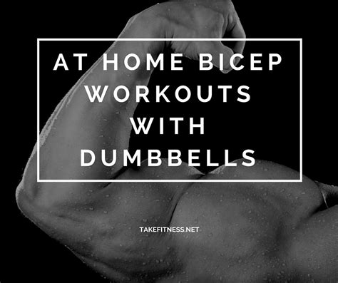 at home bicep workouts with dumbbells take fitness